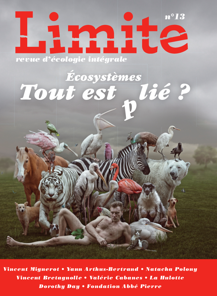 Couv Limite13